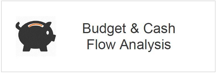 Vanquish Finance Group, Budget & Cash Flow Management